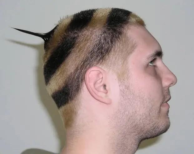 Half Ball Hair With A Tail