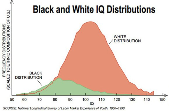 Image result for Racial IQ