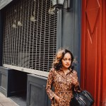snakeskin dress, snakeskin shirt dress, zara snakeskin dress, zara dupe, shein snakeskin dress, affordable fashion, affordable fall trends, dallas fashion blogger, black fashion blogger