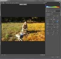 Correcting the image using Camera Raw Filter