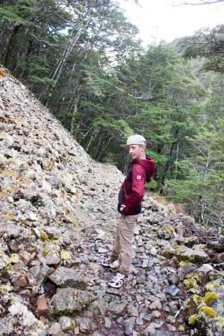 Rock Fall, Greenstone Track