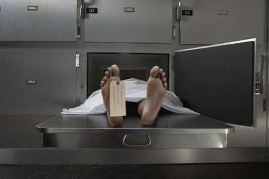 Bodies decompose quickly unless they are embalmed