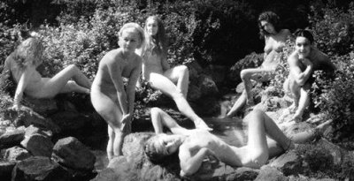 Nudists, Hippies, cuisine, Italy, Rome, Woodstock, condom, duck