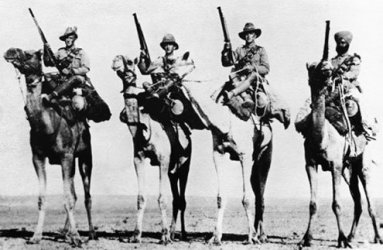 The Camel Corps, deployed on guerilla operations in Egypt and Palestine in 1918, was made up of Commonwealth troops.