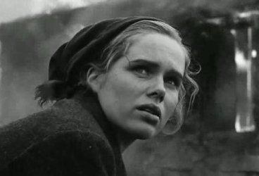 "Bergman's ""Shame"" excoriated ideology."