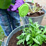 Seedlets: Gardening Time Together