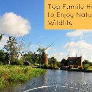 What are the Top Family Holidays to Enjoy Nature and Wildlife?