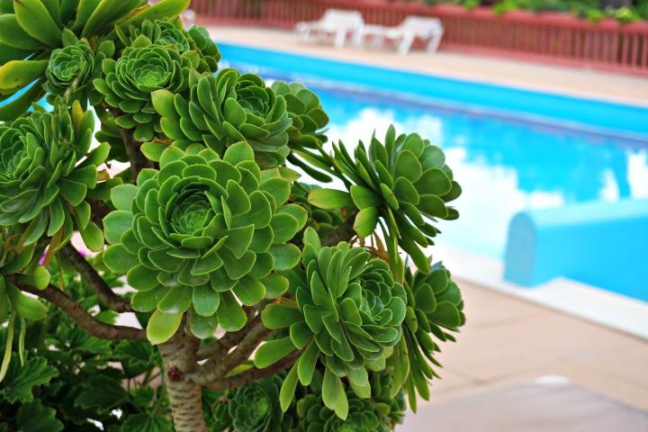 Mark warner pool Corsica