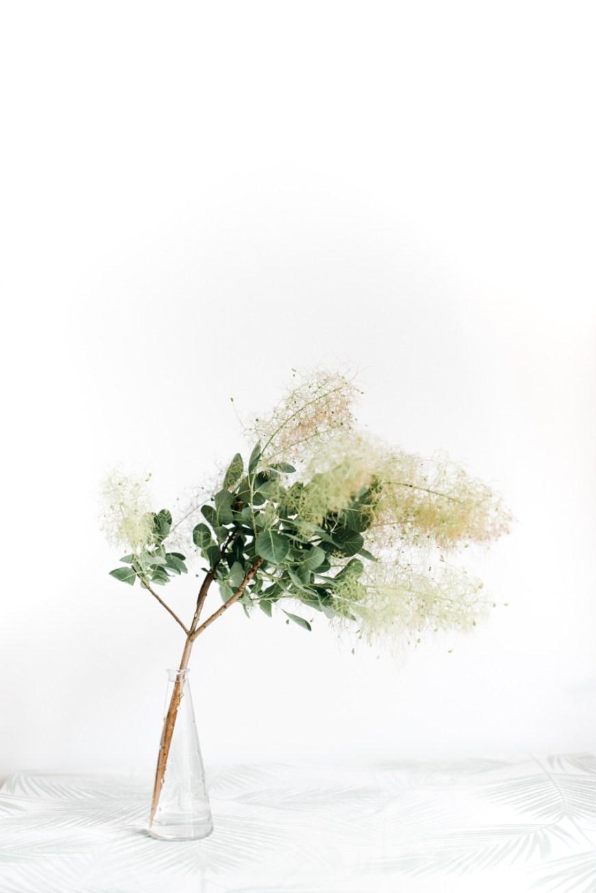flower, stem in vase very ethereal looking