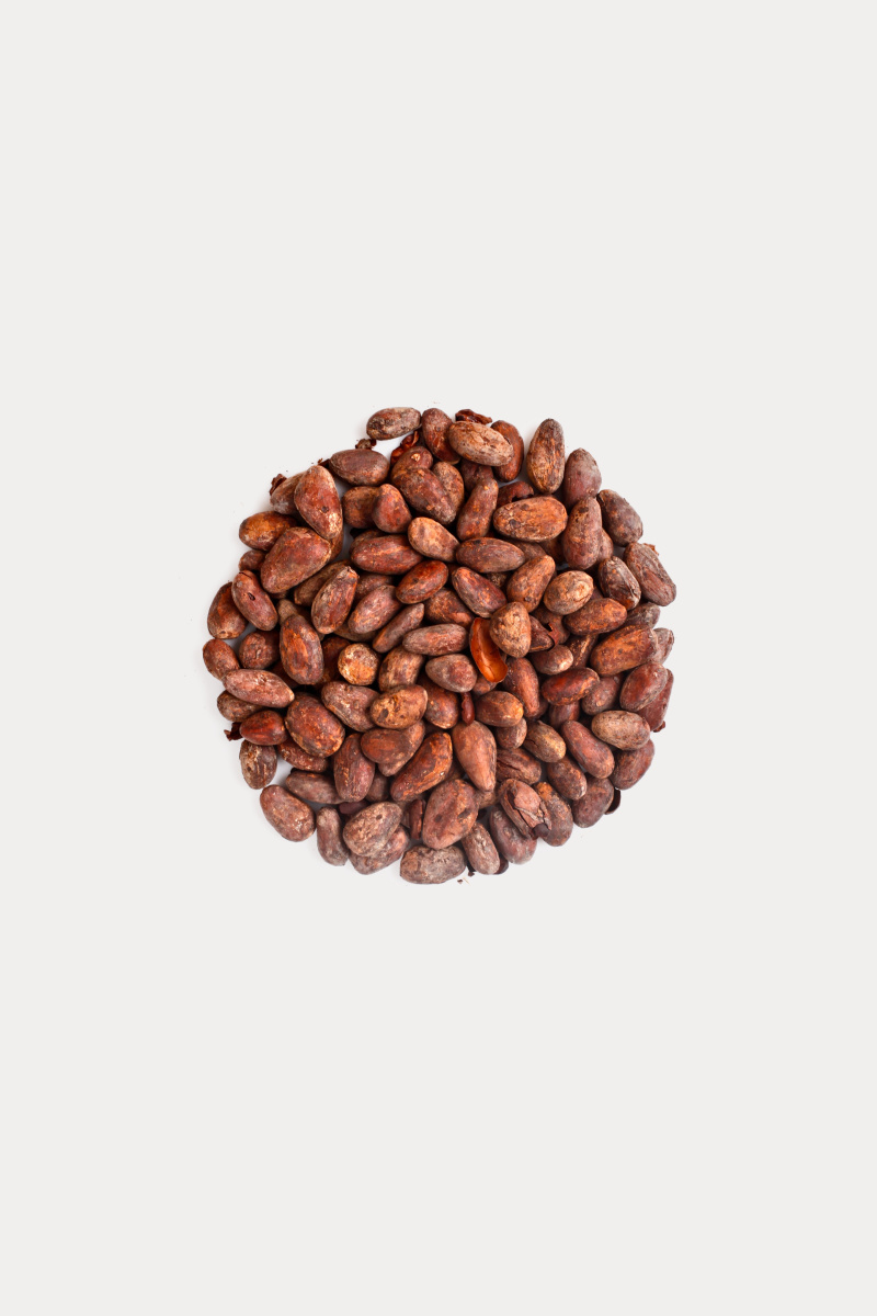 A circle of cocoa beans in the centrw of a white background