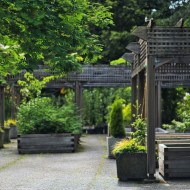 Top 10 Luxurious Ways To Transform Your Garden