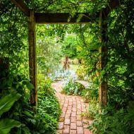 Garden Landscaping Ideas for Summer