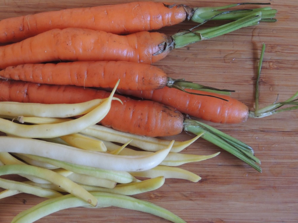 Carrots and yellow wax beans from Talley Farms