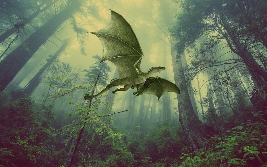 monster-reptile-monsters-dragon-dragoon-dragons-2