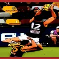 Max King's big fourth quarter grab is a The Animal Enclosure Magic Moment from the Round 13 clash between St Kilda and Brisbane in 2020
