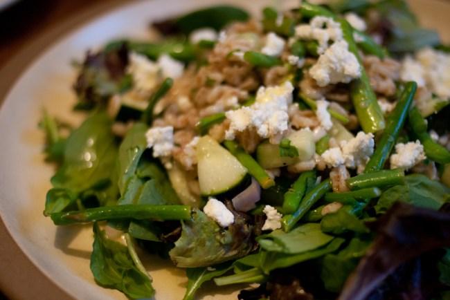 farro-asparagus-beans-4