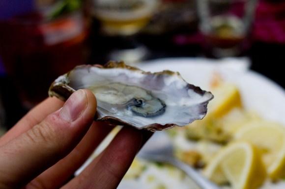 oysterfest-2014-8