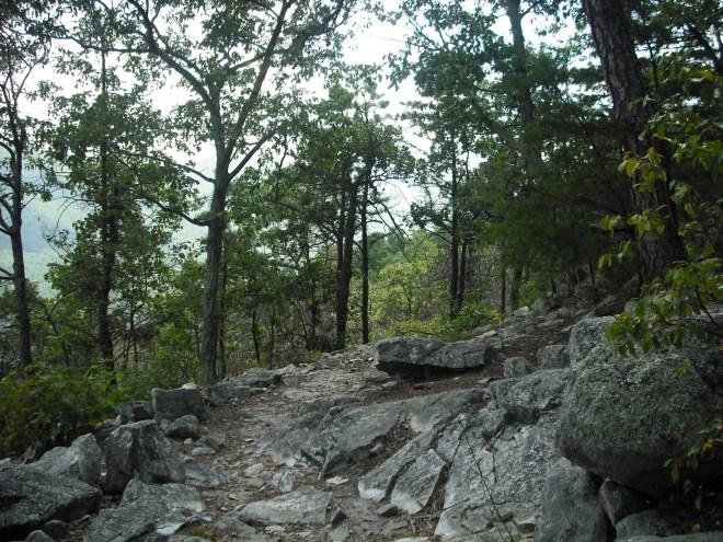 3e0ee-hikingaug2009007