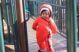 Asha in Wicker Park during winter