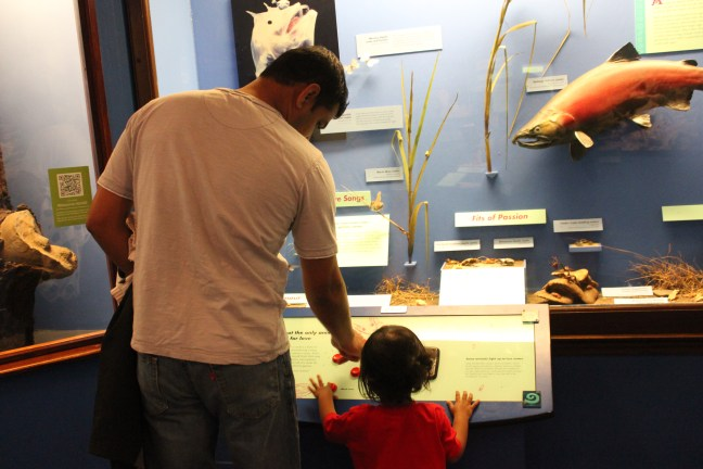 Devang and Asha at Field Museum