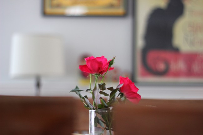 Roses in the Dining Room