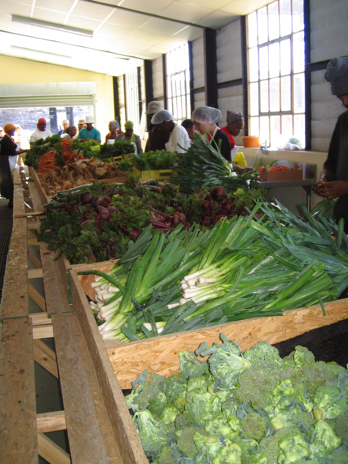 The Harvest of Hope packing shed