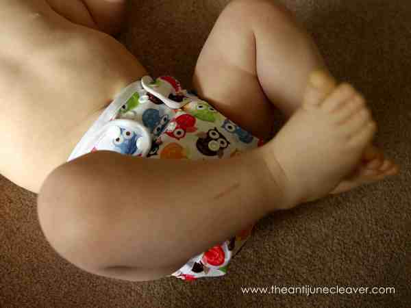Blueberry (Swaddlebees) Capri review #clothdiapers