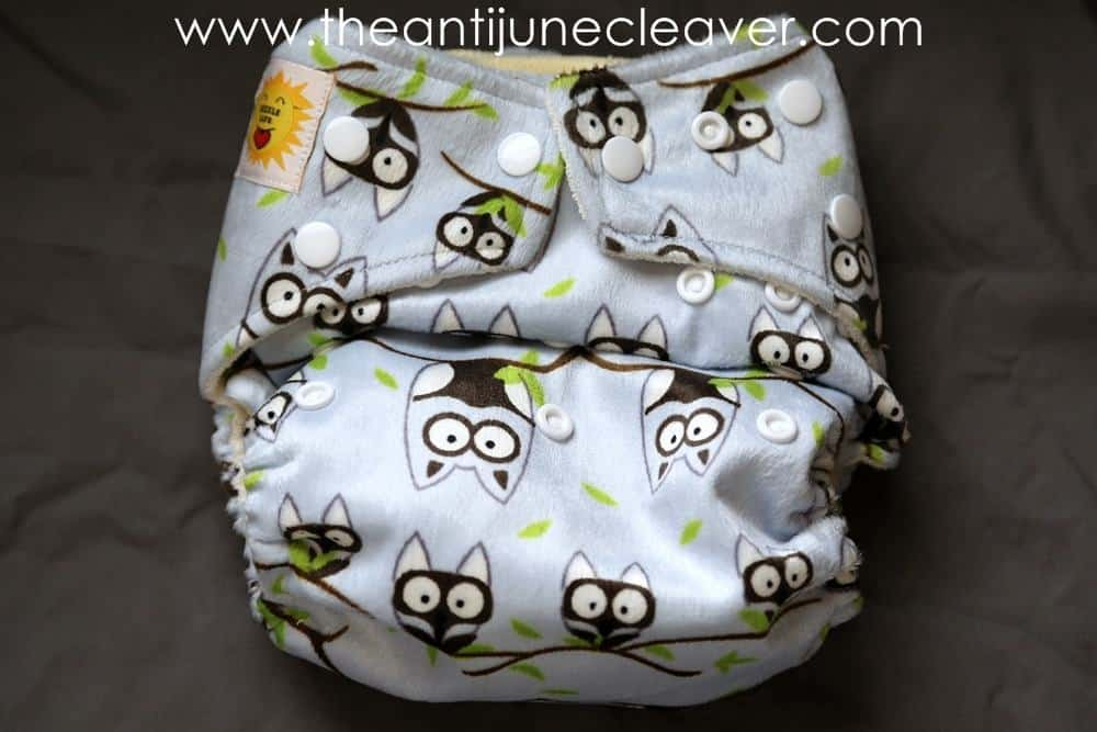 Giggle Life Cloth Diaper Review