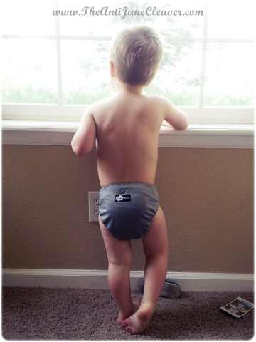 Funky Fluff diaper review