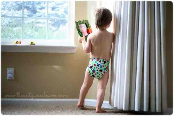 Ella Bella Bum cloth diaper review