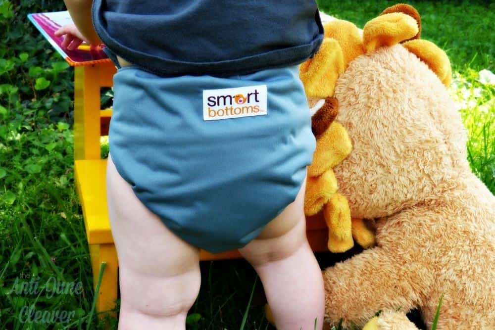 Smart Bottoms AIO cloth diaper review