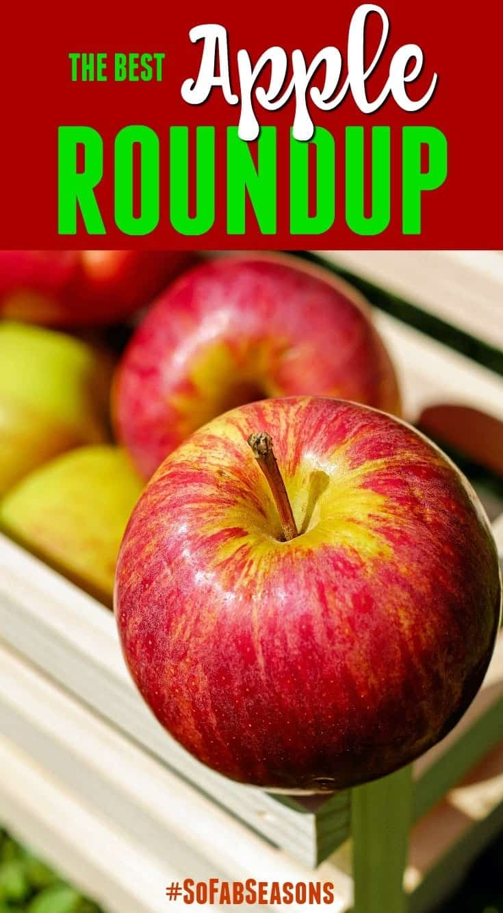 Apples, Apples Everywhere! The Best Fall Apple Roundup #SoFabSeasons