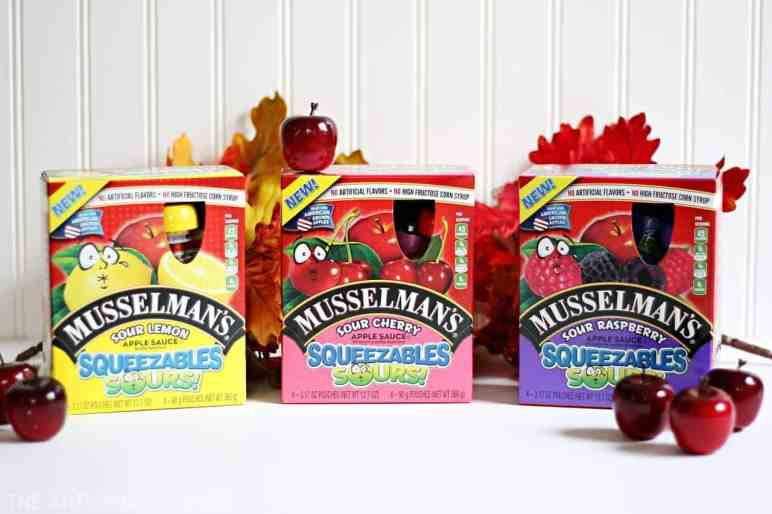 Squeeze Pouch Critter Craft with Musselman's Applesauce Sours (AD)