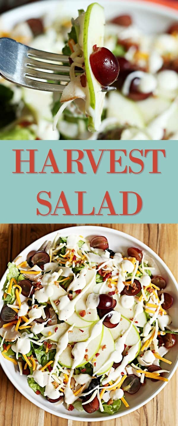 Welcome Fall with this Easy and Delicious Harvest Salad (AD) #GrabGoWow @Walmart
