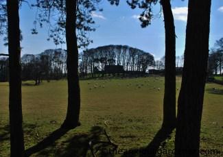 View on the Tabular Hills Walk