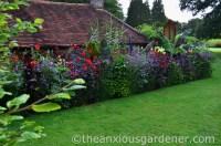 The Tropical Border  4th Year | The Anxious Gardener