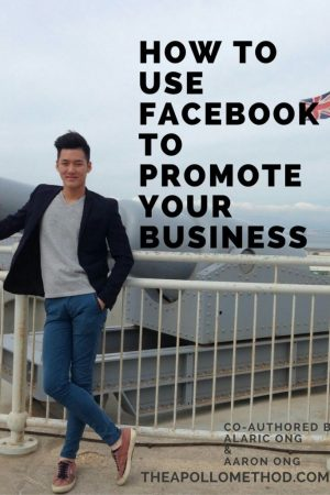 How To Use Facebook To Promote Your Business book cover