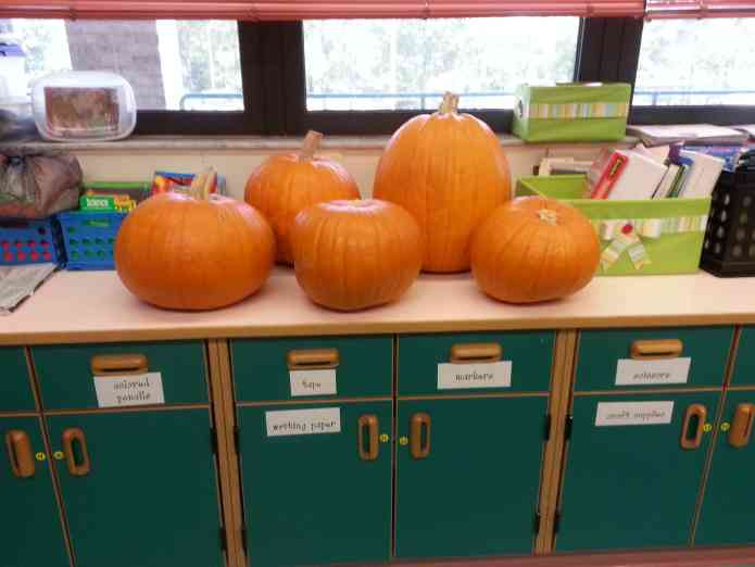 Have parents bring in pumpkins for a pumpkin fun filled day!