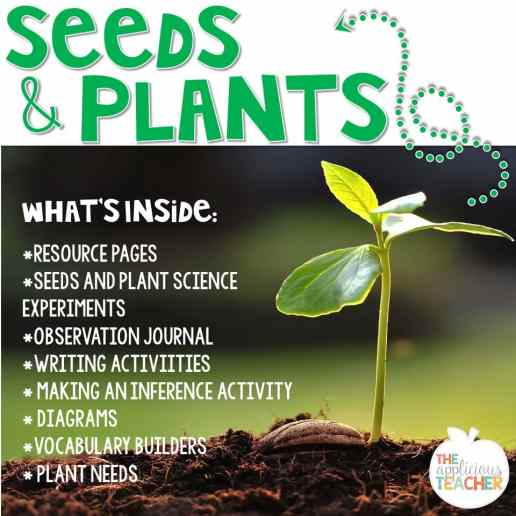 Seeds and plants unit for 2nd and 3rd grade