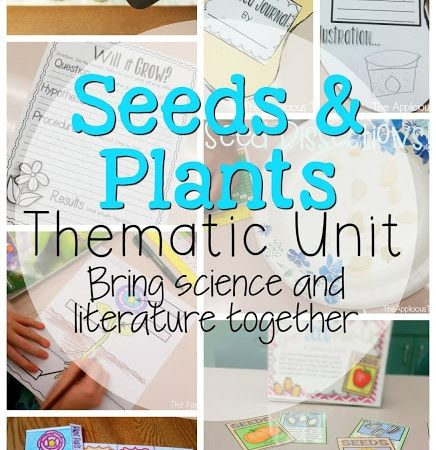 Plants and Spring Center Fun!