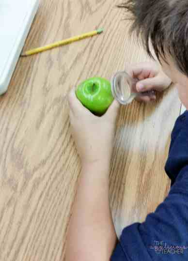 making observations of apples to better understand the properties of matter