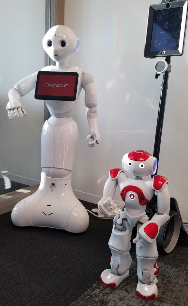 When real robots meet with chatbot