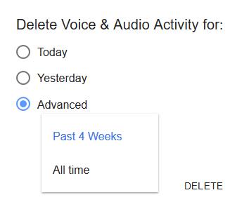 Delete Voice and Audio Activity Dialog