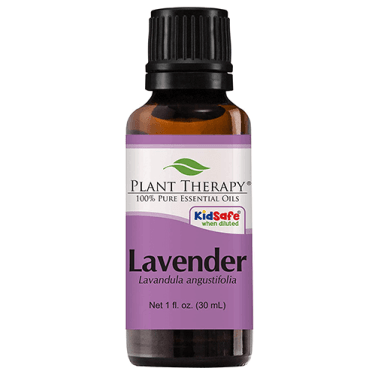 best smelling lavender essential oil