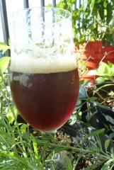 Winter Solstice Ale 3