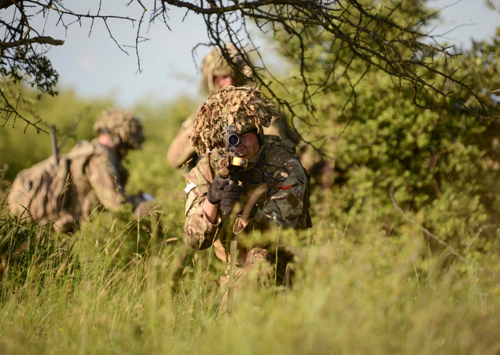 A soldier and his platoon in the long grass. A young officer exercising platoon command
