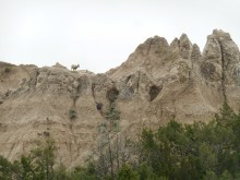 Some sort of mountain goat at the Badlands