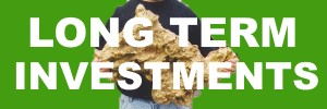 GOLD LONG-TERM INVESTMENT