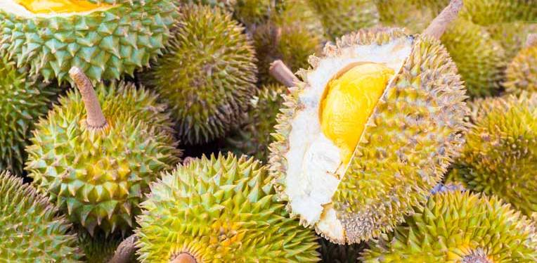 Thailand's Favorite & Dangerous Fruit – Durian