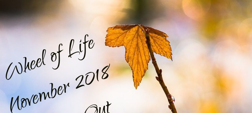 Wheel of Life: November 2018 Edition – Closing Out The Year STRONG!